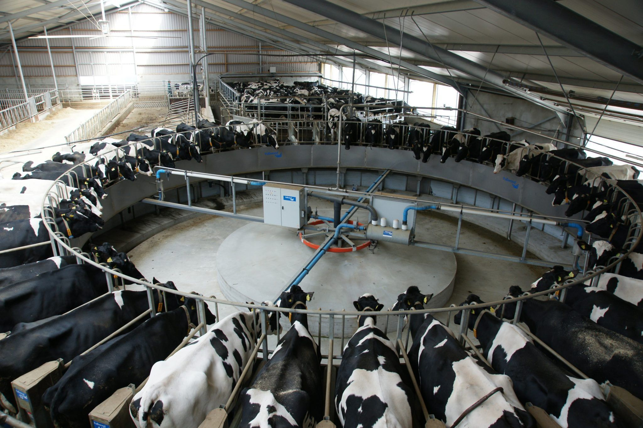 (English) Dairy installation